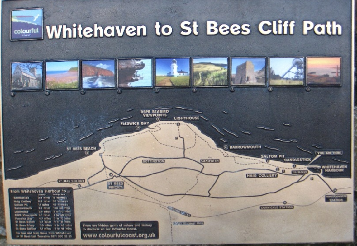whitehaven to st bees cliff walk