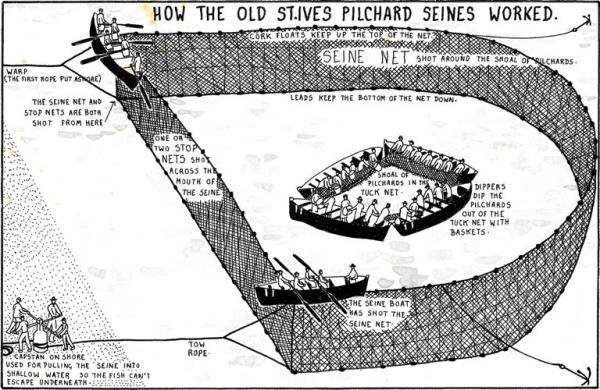 This image has an empty alt attribute; its file name is diagram-st-ives-pilchard-seines-1.jpg